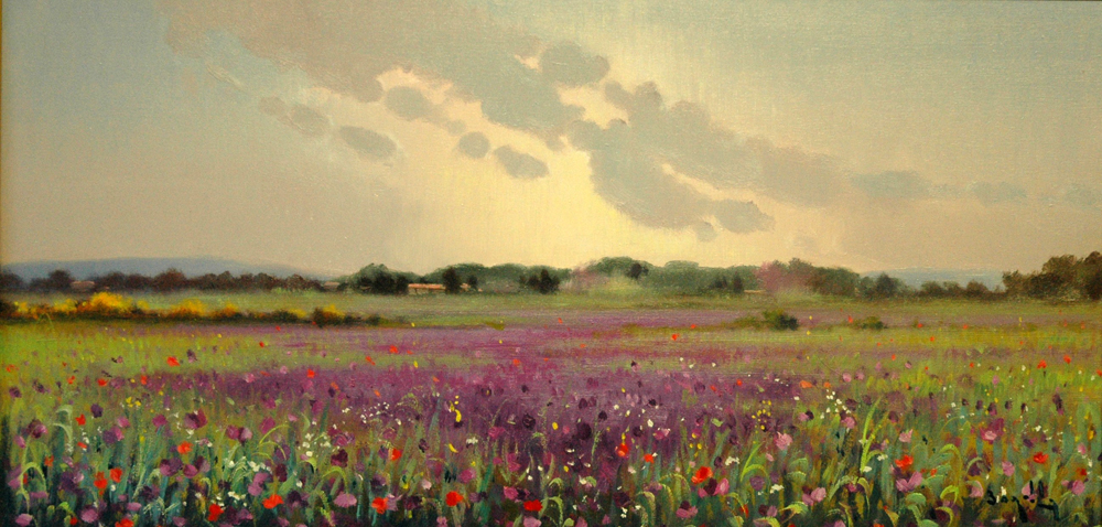 Campagna toscana in fiore