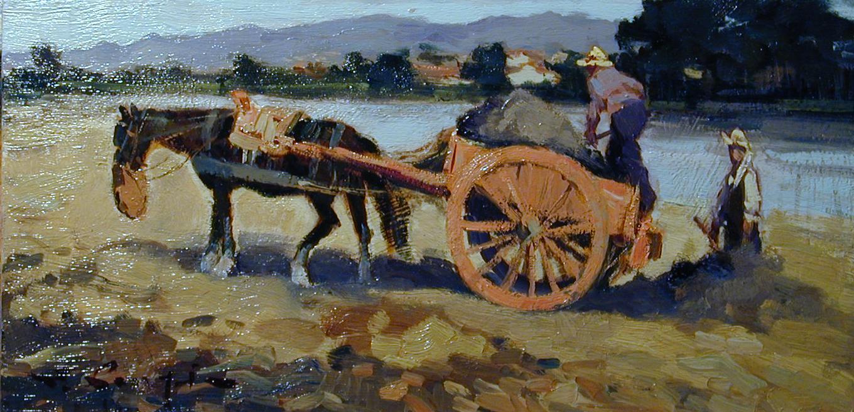 Cavallo con carro