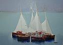 Barche con vele